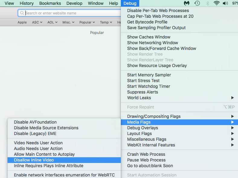 Safari Video Playback Problems -
