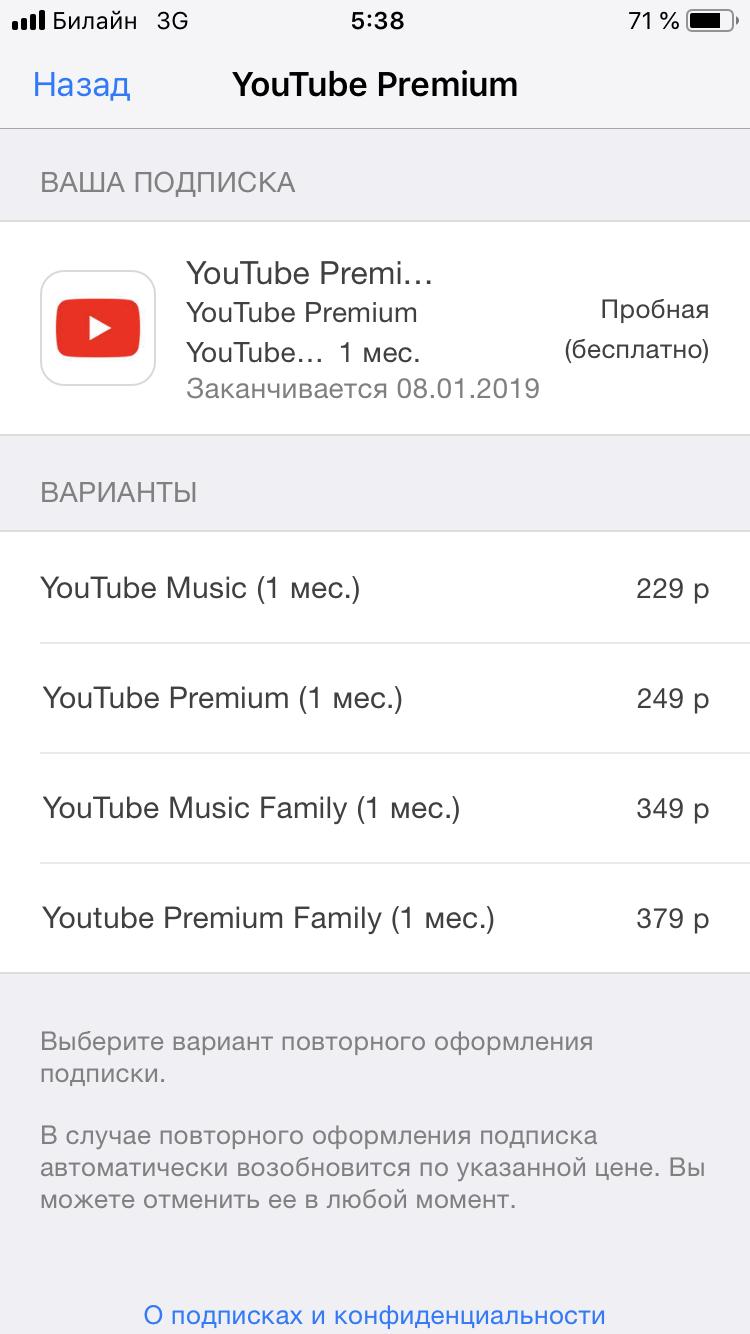 Premium youtube