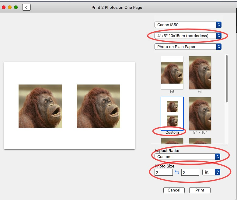 How Can I Fix The Size Of Photos For Pass Apple Community