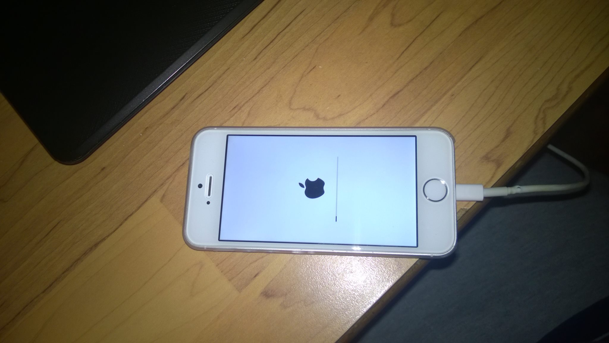 iphone 5s stuck on apple logo screen