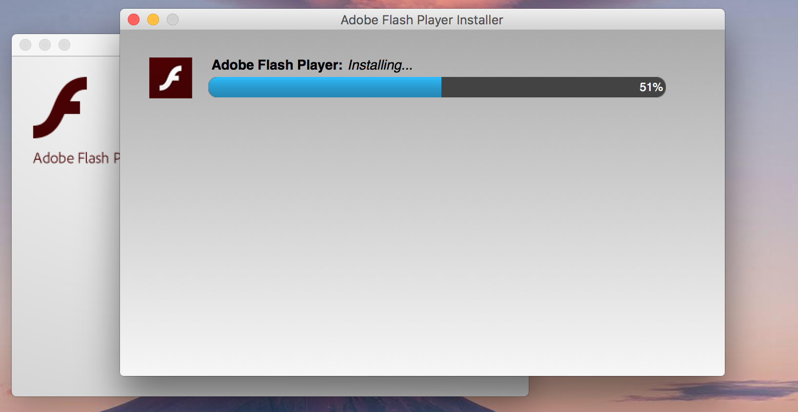 cant update flash player