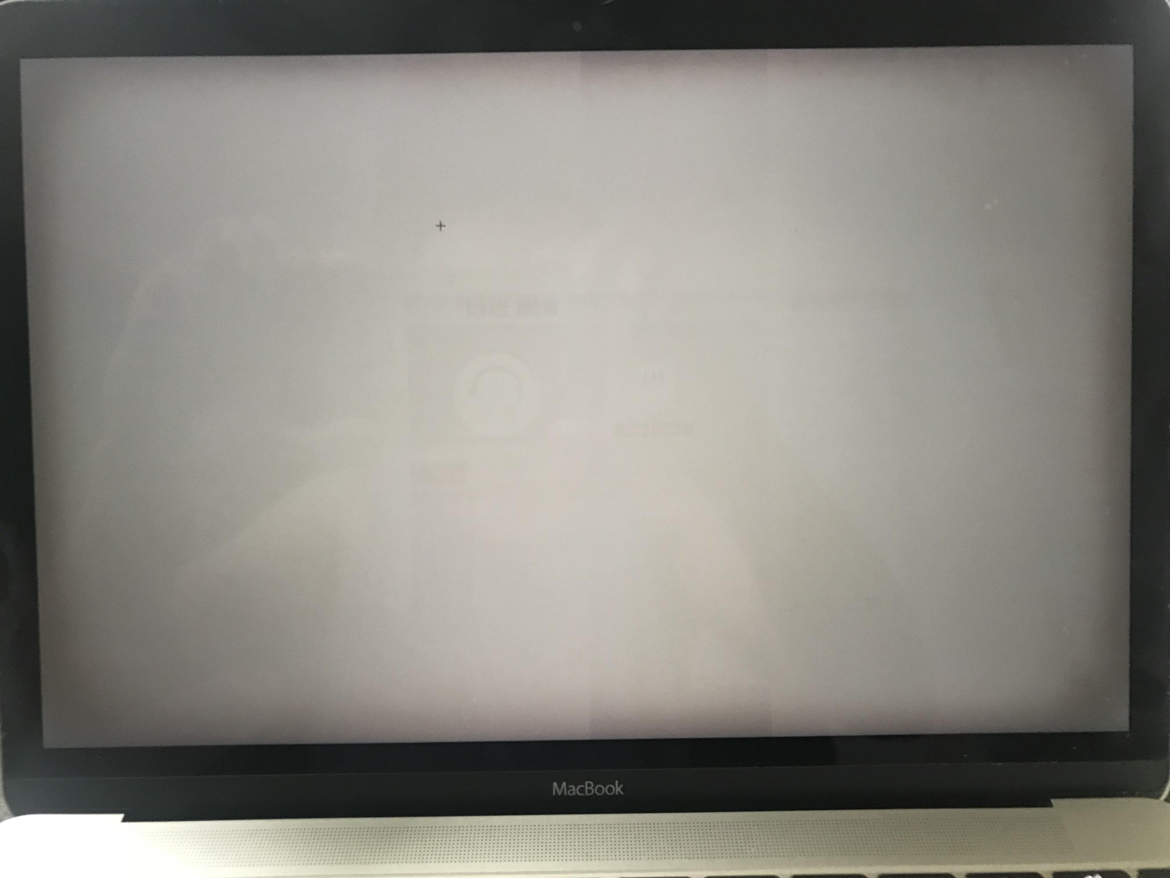 apple logo burned screen mac